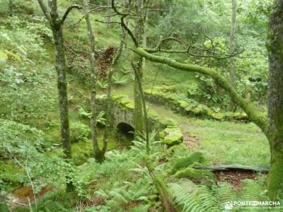 Valles Pasiegos;cola de caballo monasterio de piedra senderismo en cazorla bosque encantado asturias